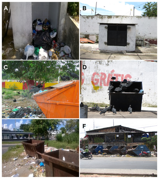 Types of rubbish bins normally present in street markets in Manaus, Brazil.