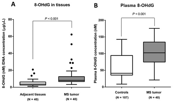 8-OHdG levels in MS tumor patients and controls.