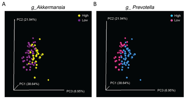 Separation along the PC3 axis is explained by differences in Akkermansia and Prevotella abundance.