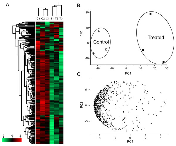 Clustering (A) and principle component analysis (B and C) of Persicaria minor proteome.