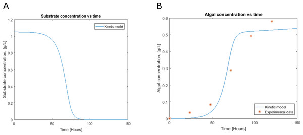 Profiles predicted by kinetic modeling at heterotrophic growth conditions (A) acetate consumption and (B) cell concentration.