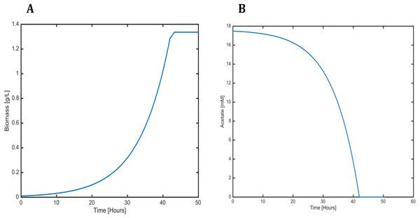 Profiles predicted by SOA of (A) biomass production and (B) acetate consumption over time.