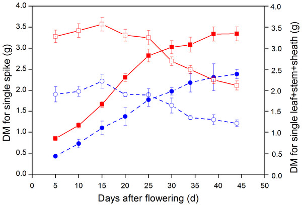 Dynamic changes in dry weight (DW) of single spike and leaf + stem + sheath in large-spike lines and CK (Xi'nong 979).