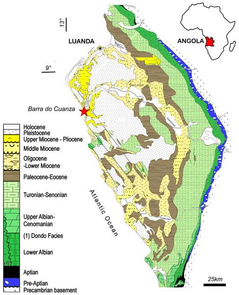 Locality of the holotype of Kwanzacetuskhoisani.