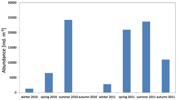 Abundance of zooplankton; data integrated for the whole water column at station P1 (inner Gulf of Gdańsk) in 2010–2011.