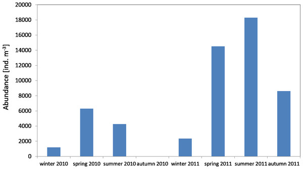 Abundance of Copepoda; data integrated for the whole water column at station P1 (Gdańsk Deep) in 2010–2011.