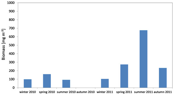 Biomass of Copepoda; data integrated for the whole water column at station P1 (Gdańsk Deep) in 2010–2011.