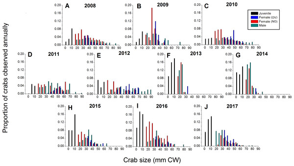 Detailed size structure of green crabs observed on the intertidal at Clarke Head, NS, in each year monitored (2008–2017).