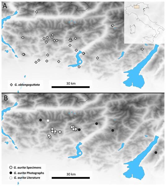 Maps showing the Bergamasque Alps area between the Lago di Como and the Lago di Garda.