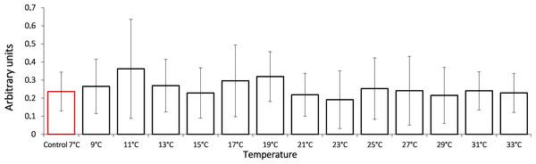 HSP70 levels in Lake Shira G. lacustris amphipods during exposure to gradual temperature increase (1°C/h).