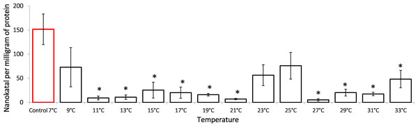 Lactate dehydrogenase activity (in nKat/mg of protein) in Lake Shira G. lacustris amphipods during exposure to gradual temperature increase (1 °C/h).