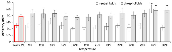 Levels of triene conjugates in neutral lipids (heptane fraction) and phospholipids (isopropanol fraction) in Lake Shira G. lacustris amphipods during exposure to gradual temperature increase (1 °C/h)