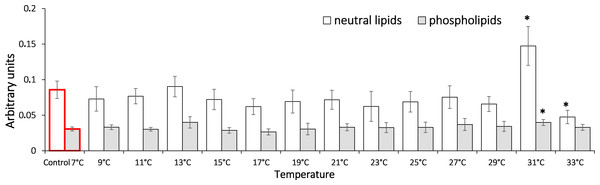 Levels of Schiff's bases in neutral lipids (heptane fraction) and phospholipids (isopropanol fraction) in Lake Shira G. lacustris amphipods during exposure to gradual temperature increase (1 °C/h)