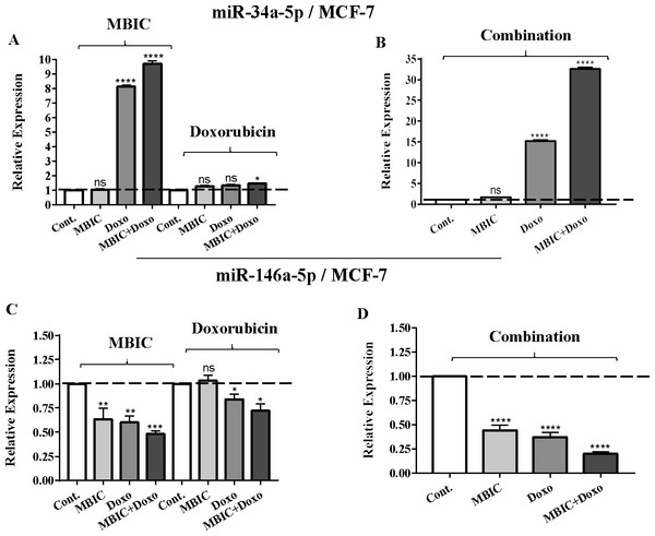 The role of miRNAs (miRs) miR-34a and miR-146a in synergistic effect of MBIC with doxorubicin in MCF-7 cells.