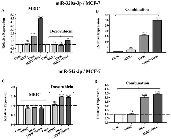 The role of miRNAs (miRs) miR-320a and miR-542 in synergistic effect of MBIC with doxorubicin in MCF-7 cells.
