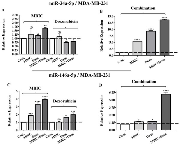 The role of miRNAs (miRs) miR-34a and miR-146a in synergistic effect of MBIC with doxorubicin in MDA-MB-231 cells.