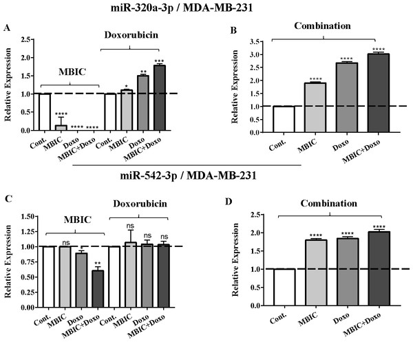The role of miRNAs (miRs) miR-320a and miR-542 in synergistic effect of MBIC with doxorubicin in MDA-MB-231 cells.