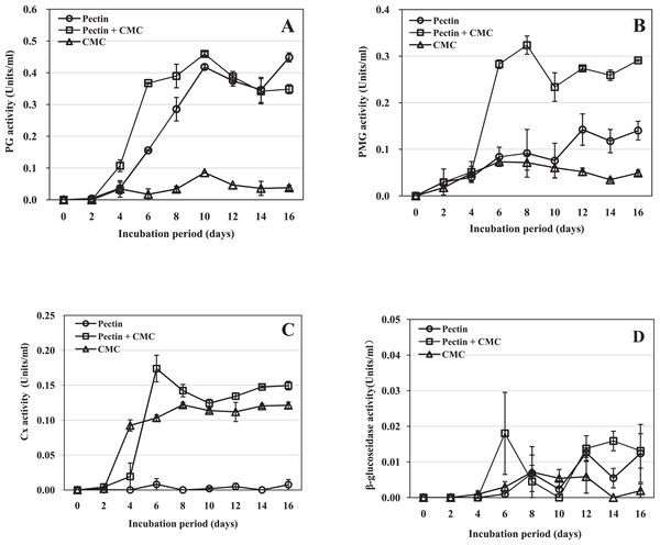 Activity of R. solani cell-wall-degrading enzymes including PG, PMG, Cx and β-glucosidase in liquid shaken cultures containing various carbon sources.