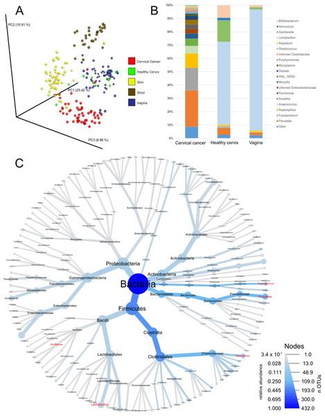 Community composition in cervical cancer and healthy adjacent sites.