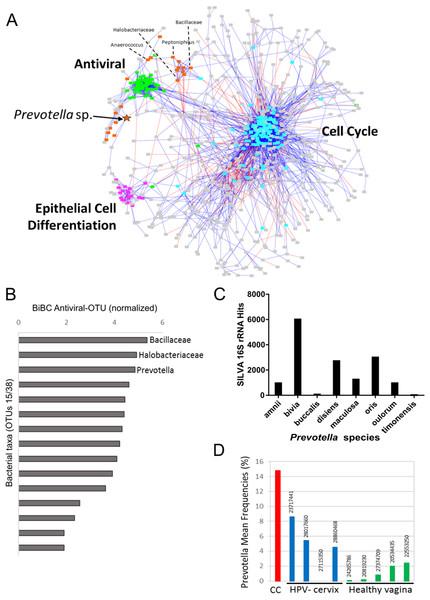 Transkingdom microbe-gene regulatory network.