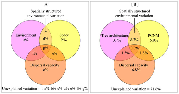 Venn diagram showing relative influence of tree architecture, spatial distance and dispersal capacity on beta diversity.