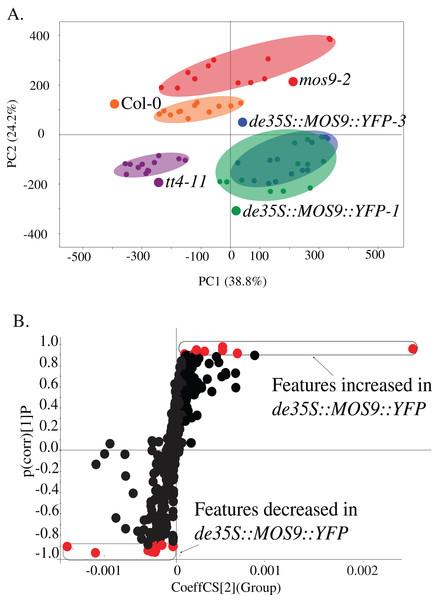 Metabolite profiling of de35S::MOS9::YFP, mos9-2, tt4-11, and Col seedlings.