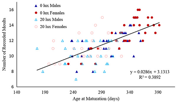 Relationship between number of moults and age at which spiders reached final moult.
