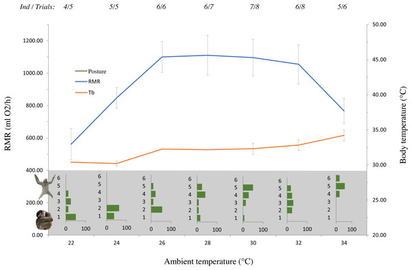 The effect of ambient temperature (Ta) on resting metabolic rate (RMR), rectal temperature (Tb) and posture of Bradypus variegatus sloths.