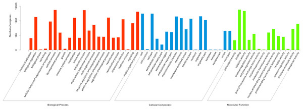 Functional classification of Gene Ontology (GO) for assembled unigenes of T. grandis.