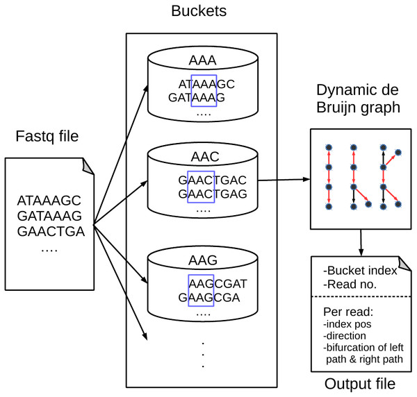 An overview of the BdBG method.