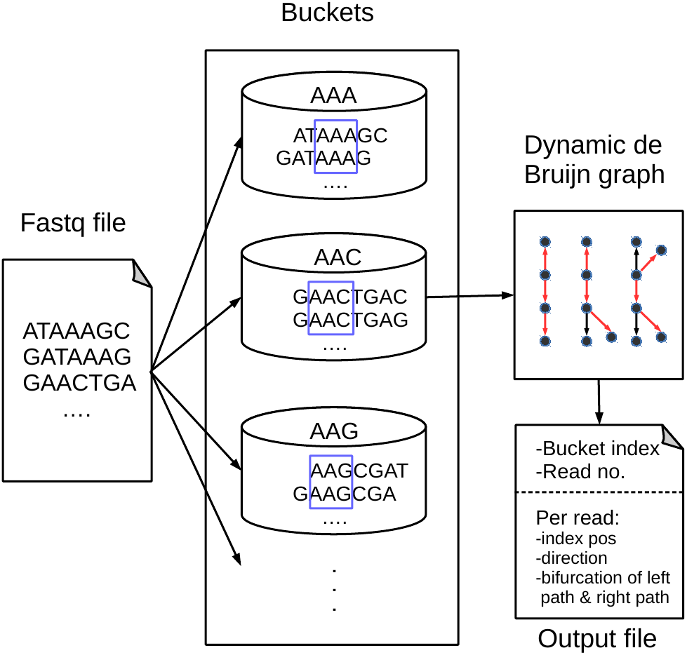 BdBG: a bucket-based method for compressing genome