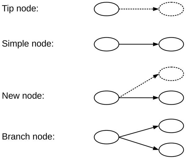 We define four types of nodes in the de Bruijn graph.