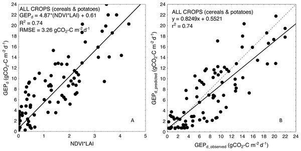 Scatterplots of relationships between (A) NDVI*LAI and GEPd and (B) observed and predicted GEPd estimated for all the crops considered together, based on the general crop-combined model.