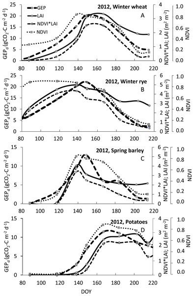 Example of seasonal courses of GEPd, NDVI, LAI and NDVI*LAI for winter wheat (A), winter rye (B), spring barley (C) and potato (D) in 2012.