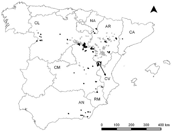 Dupont's lark distribution in Spain according to Suárez, 2010 (light grey) and Dupont's lark populations included in this study (black).