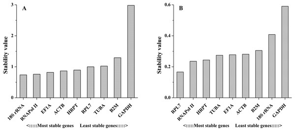 Average expression stability values of the candidate reference genes in different tissues (A) and under salinity stress (B) analyzed by NormFinder.