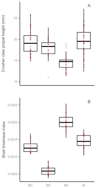 Regional variation in European green crab claw size and Mytilus mussel shell thickness for four regions.