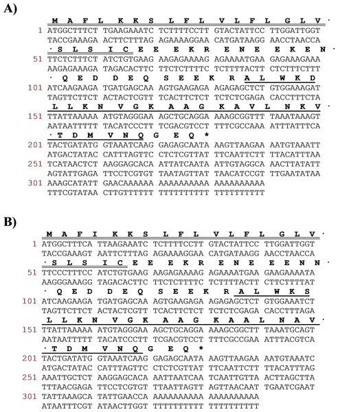 Translated amino acid sequence of the open-reading frame and nucleotide sequence of cloned cDNA encoding the biosynthetic precursor of DRS-CA-1 (A) from Callimedusa (Phyllomedusa) camba and DRS-DU-1 (B) from Phyllomedusa duellmani.