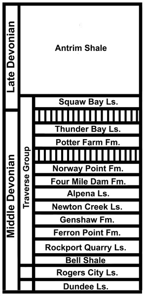 Stratigraphy of the Devonian deposits of the northern part of the Lower Peninsula of Michigan.