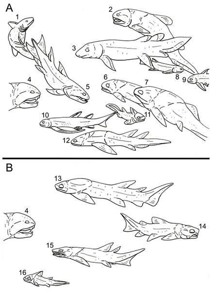 A representation of the Devonian vertebrate fauna known from Michigan.