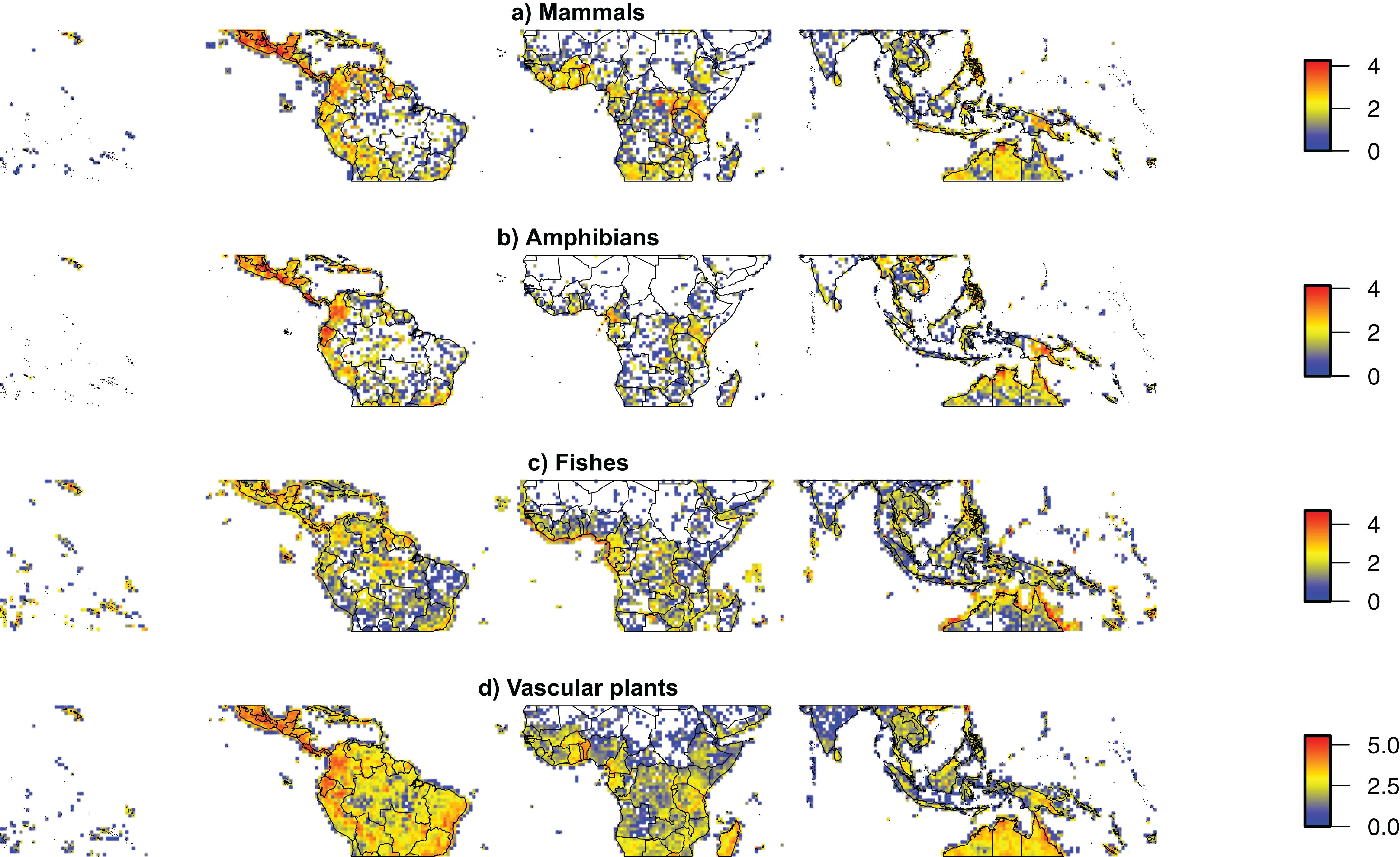 Conceptual and empirical advances in Neotropical