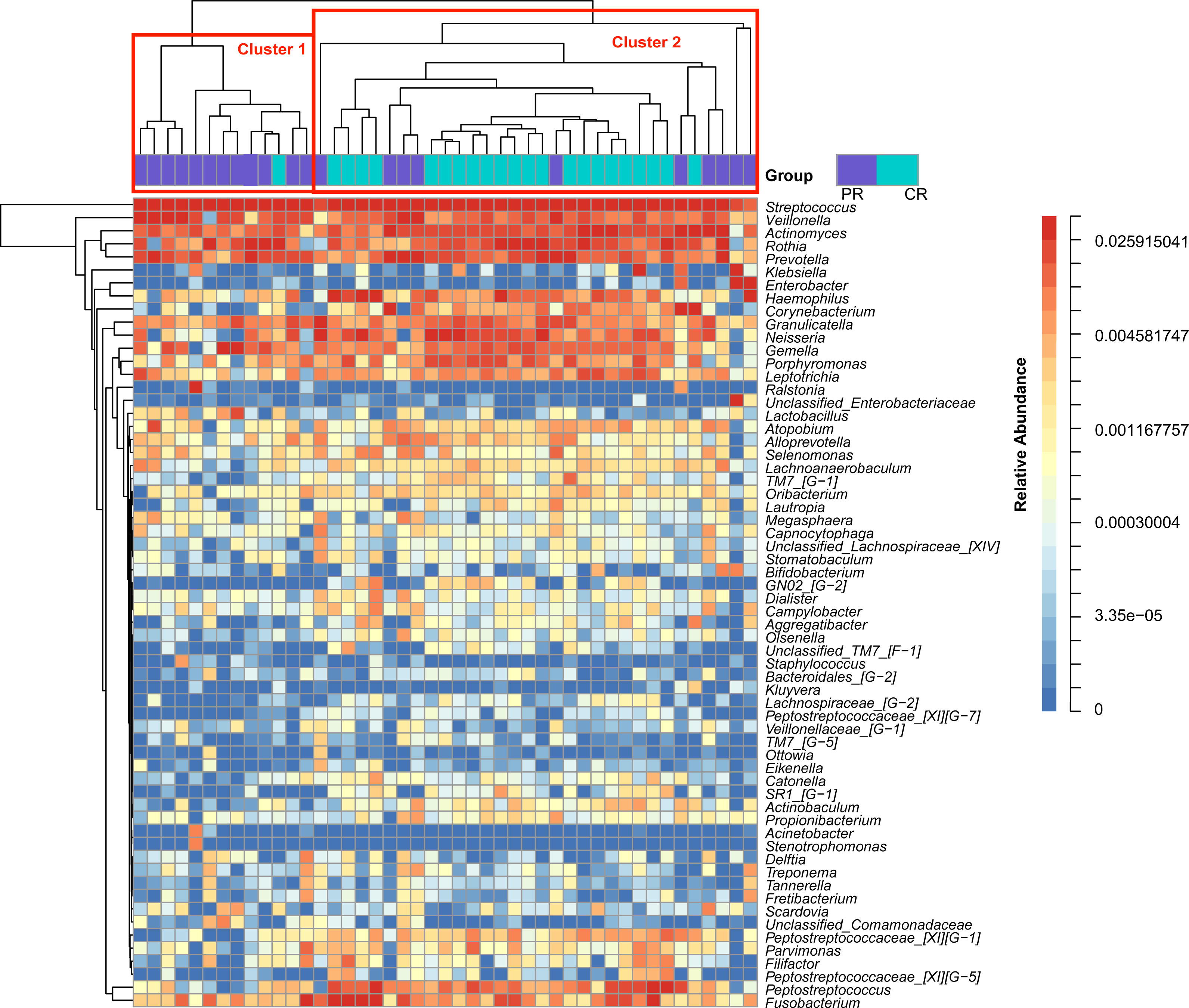 Molecular analysis of oral microflora in patients with primary