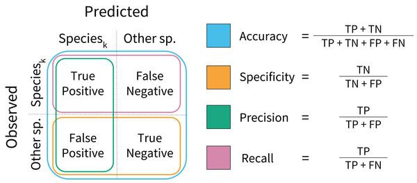 Model performance metrics.