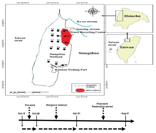 Sampling stations of macrobenthos.