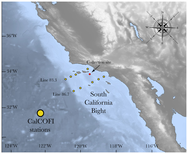 Map of the South California Bight showing the sampling station (red dot).