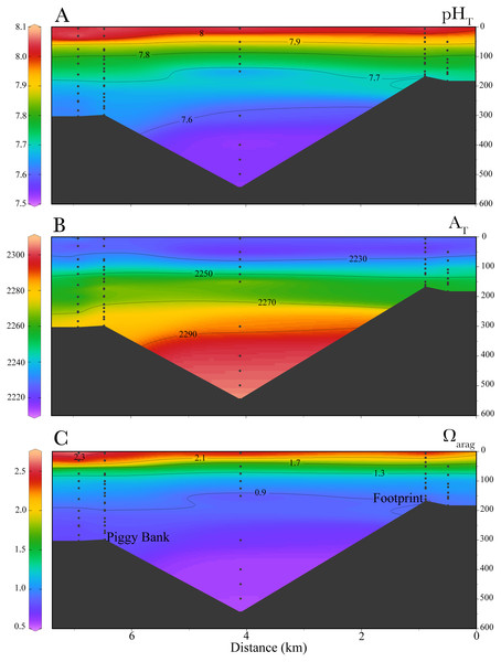 Cross-sectional profiles of in-situ carbonate chemistry parameters.