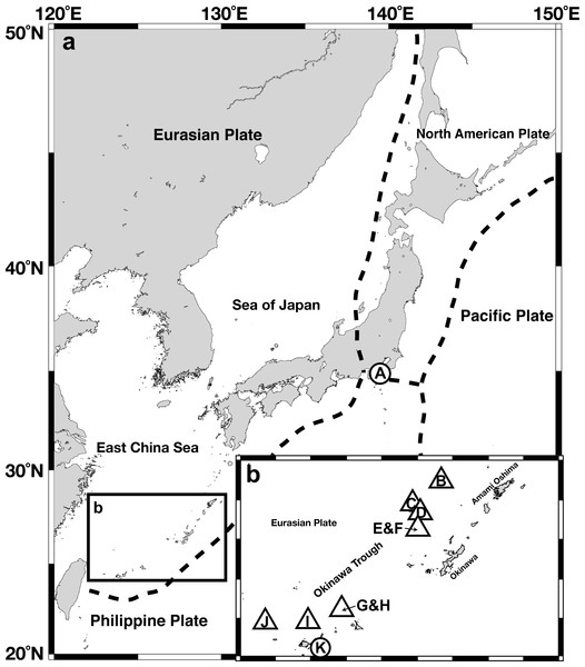 Gross map (A) and magnified map (B) of sampling locations in the Nansei-shoto area.