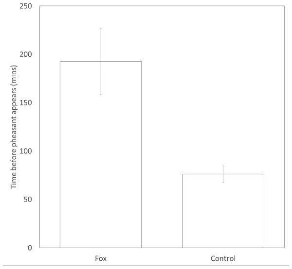 Time delay before a pheasant appears at a feeder after a fox has been present or a paired, time-matched control period 24 hrs before the fox was sighted. Error bars = ±1SE
