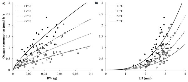 Best-fit models of the effects of temperature and body size (DW and L3) on oxygen consumption rates (VO2) (μmol h−1).