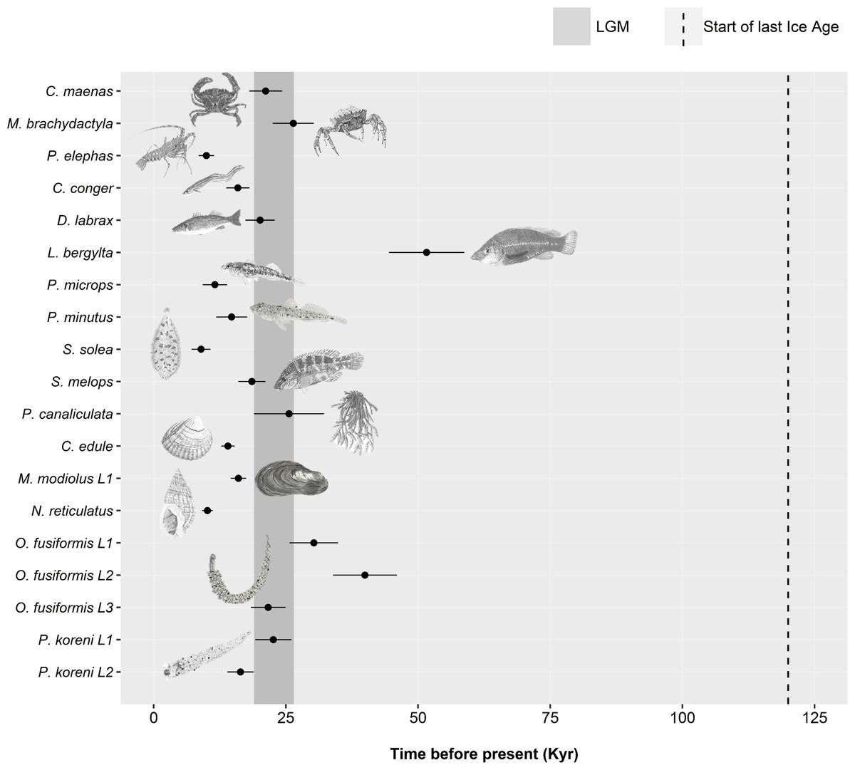 Meta-analysis of northeast Atlantic marine taxa shows